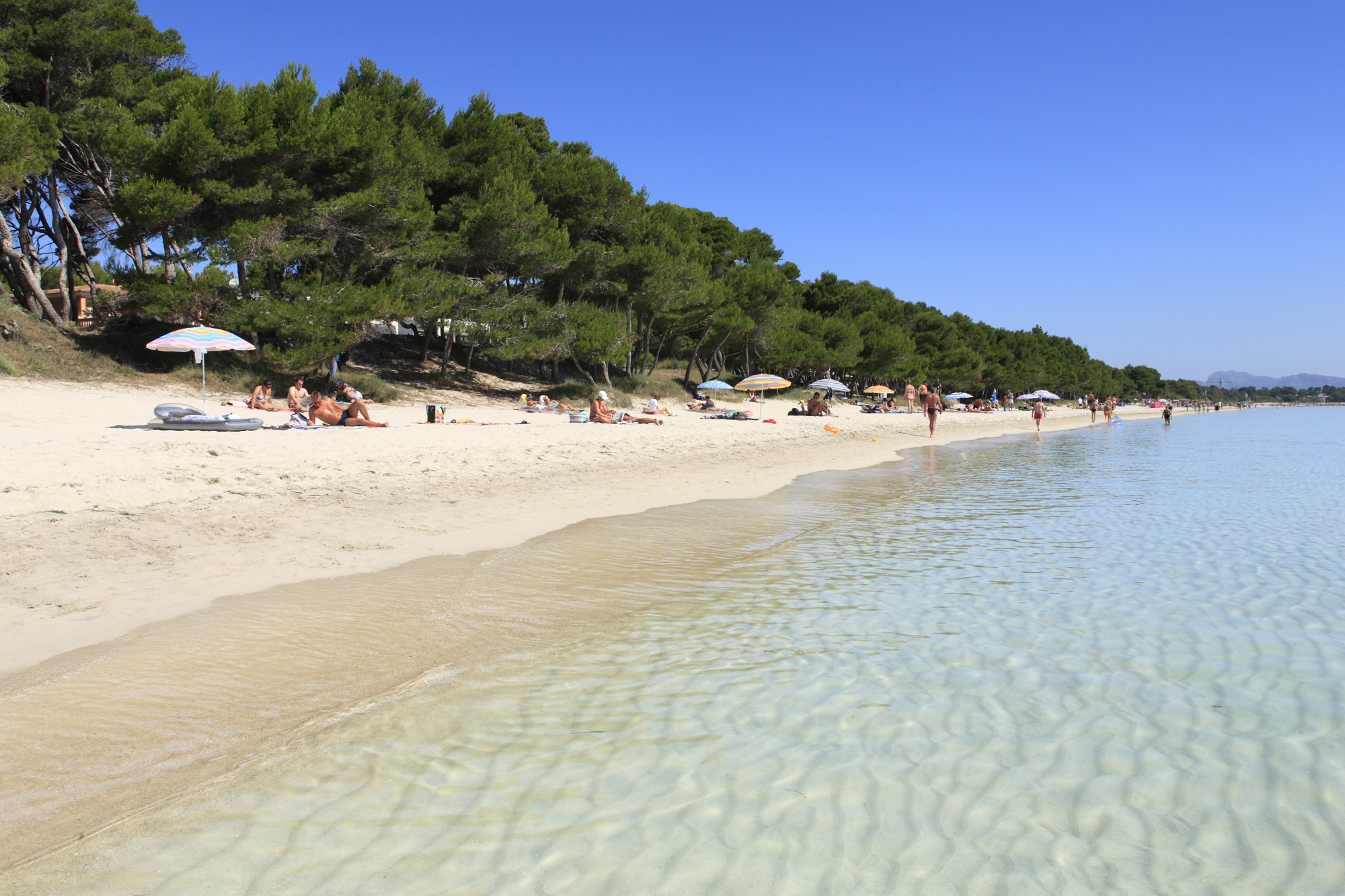 Club MAC image of Alcudia beach